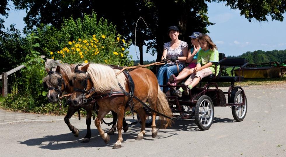 Kutschfahrt auf dem Bauernhof von Familie Strodel