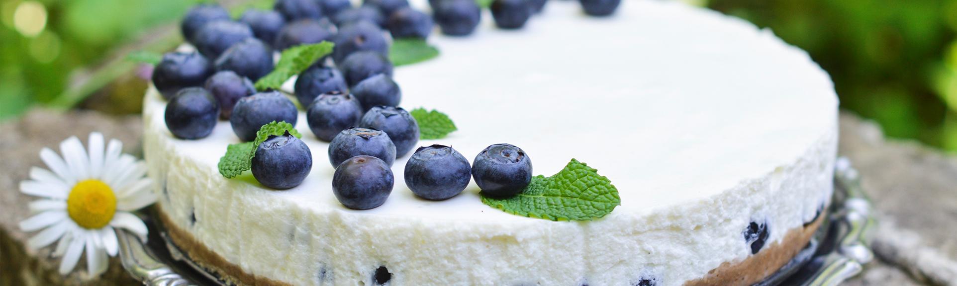 Rezeptbild Joghurtkuchen mit Blaubeeren